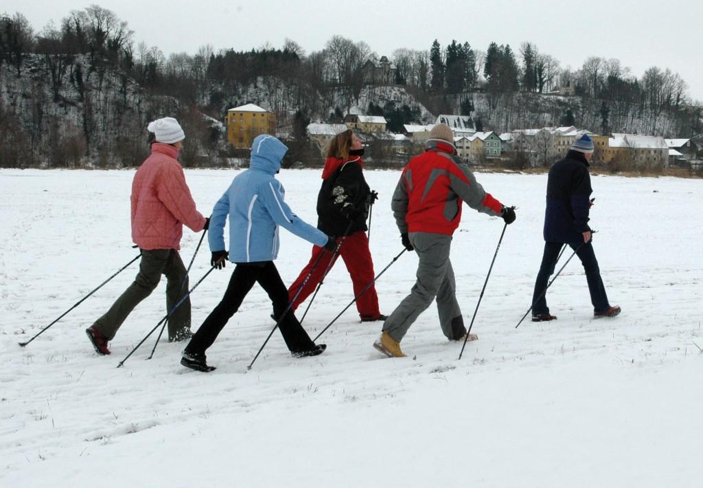 Gruppe beim Nordic Walking im Winter